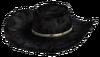 Desperado cowboy hat.png