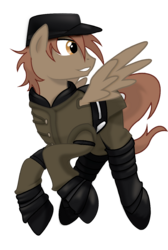 Windsheer by geekladd-d6a14l4.png