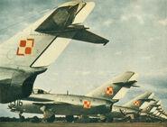 PZL15squadron