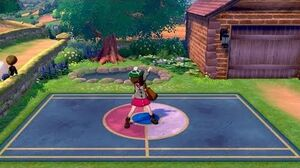 Pokemon Sword Shield - Twirling~