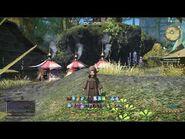 Final Fantasy XIV changing jobs