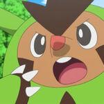Quilladin anime 1.jpg
