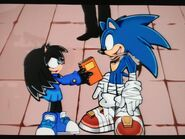 Fan and Sonic