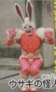 220px-KRDO-Pink Rabbit Imagin.jpg