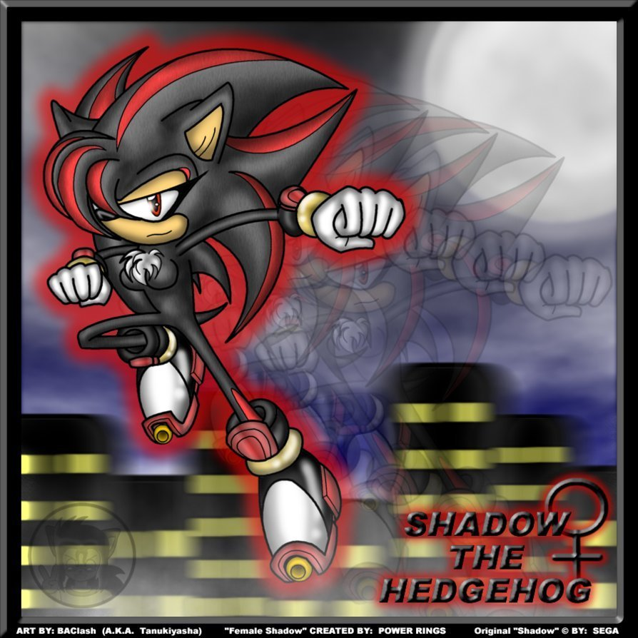 Tiffany The Hedgehog (TailsKid26's Universe)