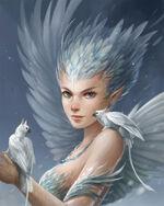 Sneeuwharpij door Sandara, Aello.jpeg
