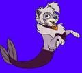 Dixie Pomeranian merdog