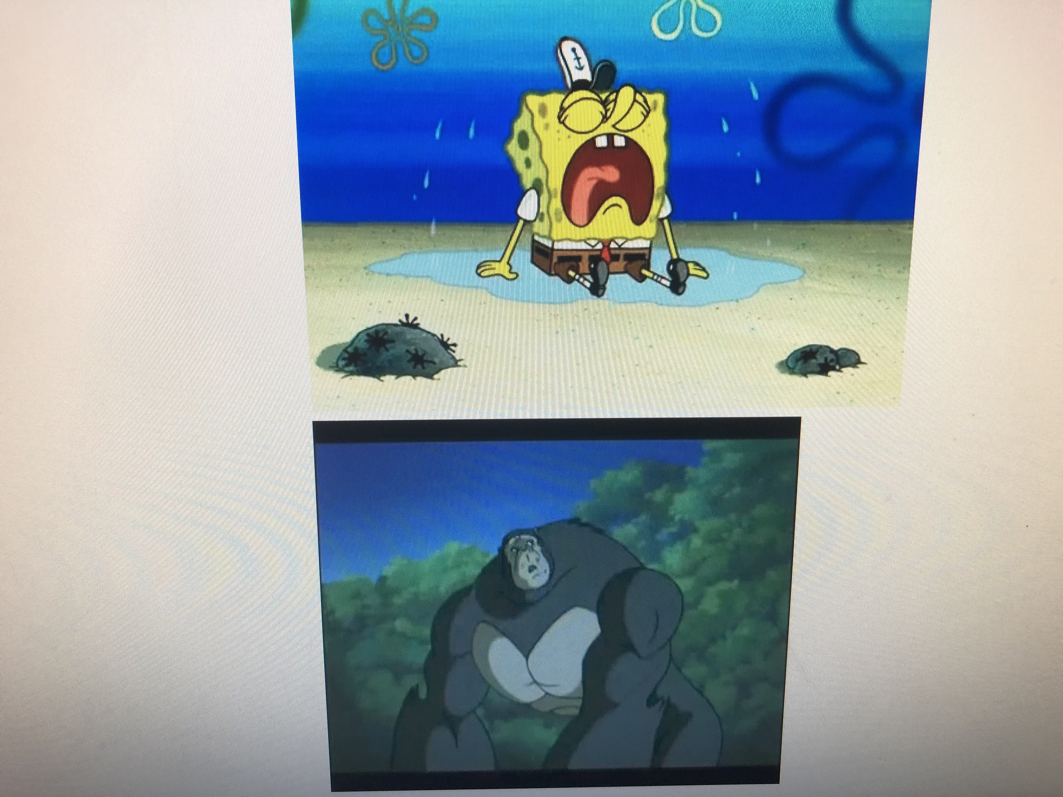 Kong Feels Bad for Spongebob