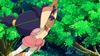 800px-Iris Swinging