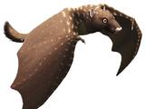 Triconolestes (SciiFii)