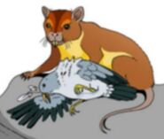 Devil's rat (SciiFii)