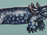 Ichthyostega (SciiFii)