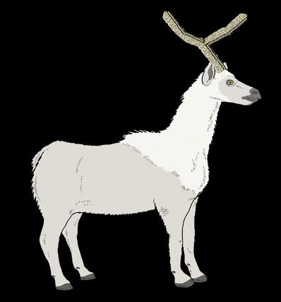 Antarctican Deer