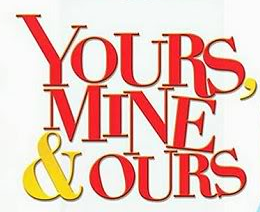 Yours, Mine & Ours (television series)