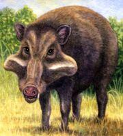 Skinnerhyus (SciiFii).jpg