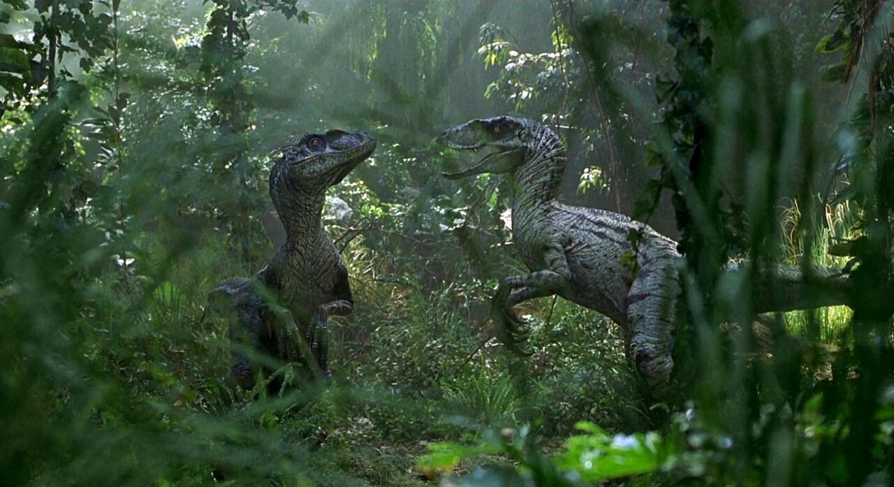 Squatmaraptor