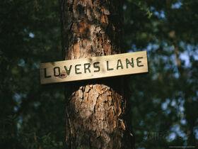 Lovers Lane.jpg