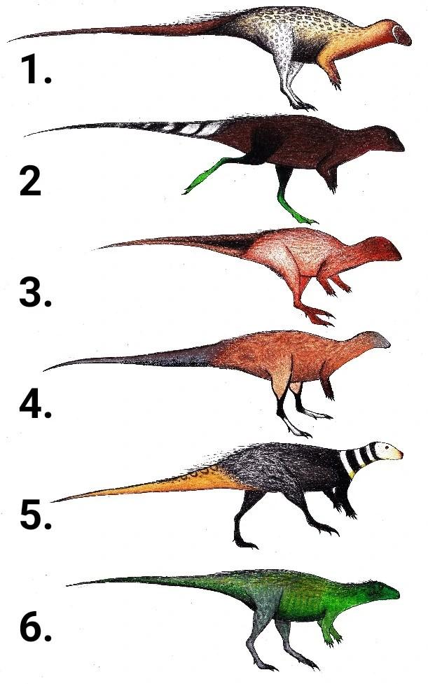 Domestic Ornithopod