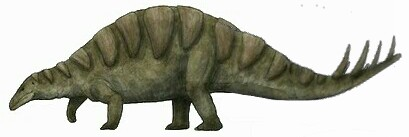 Timackrosaurus