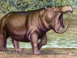 Hippopotamus madagascariensis (SciiFii)