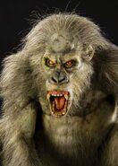 Gray gorilla (SciiFii)