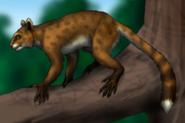 American tamarin lemur (SciiFii)