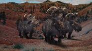 Pachyrhinosaurus argen