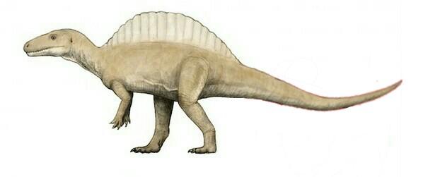 Megadontosaura