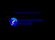 Thunderstone Pictures 1980-2009 Closing Logo.png