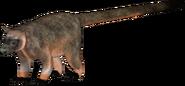 American tree-kangaroo (SciiFii)