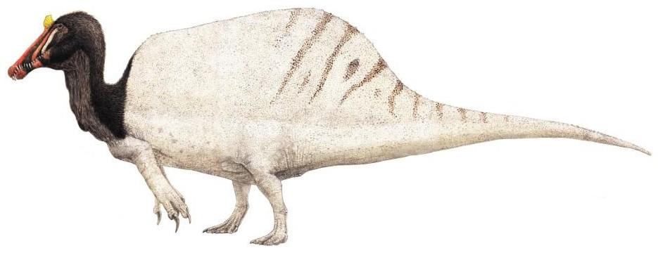 Ammutosaurus (SciiFii)
