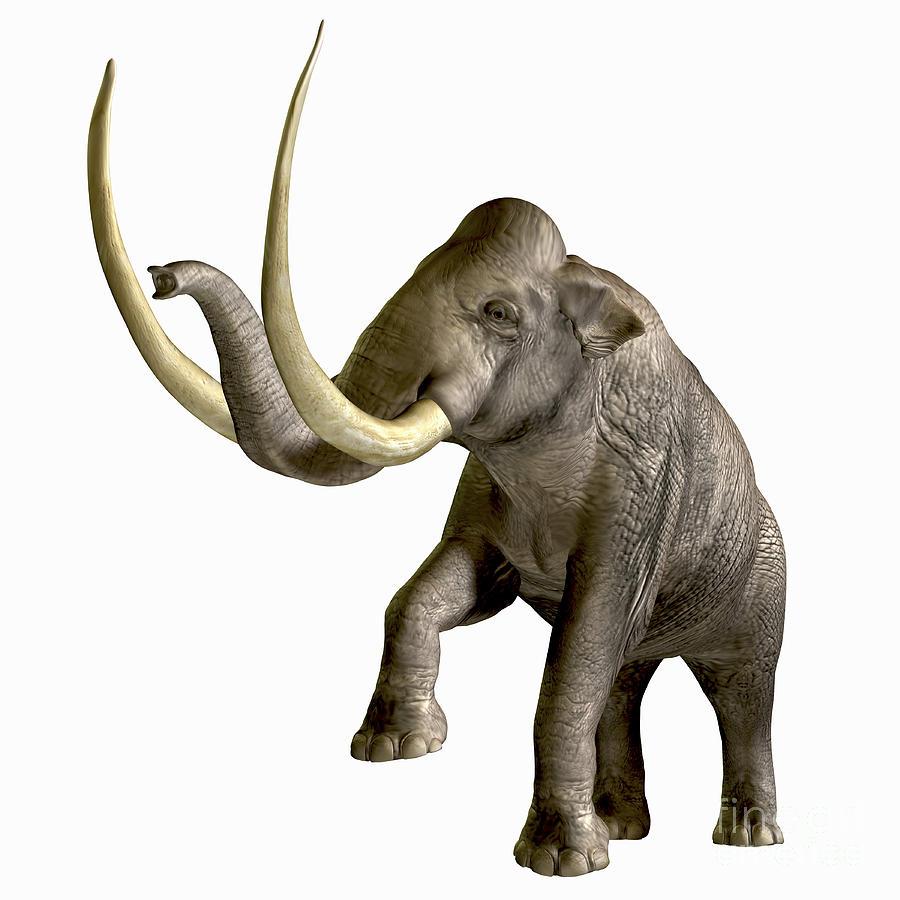 Columbian mammoth (SciiFii)