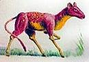 Antelope horse (SciiFii)
