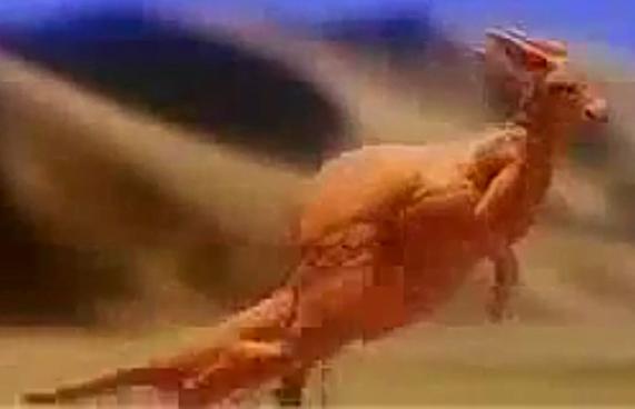 Desert Leaper (DinosaursRoar's Version)