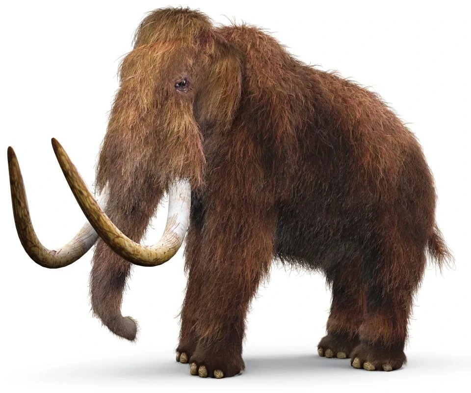 Woolly mammoth (SciiFii)