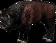 Eastern bison (SciiFii)