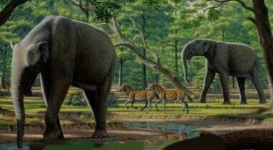 Lemurian Elephant