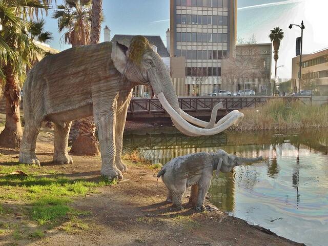 Urban Mammoth