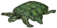 Wing-ding turtle (SciiFii)