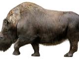 Woolly rhinoceros (SciiFii)