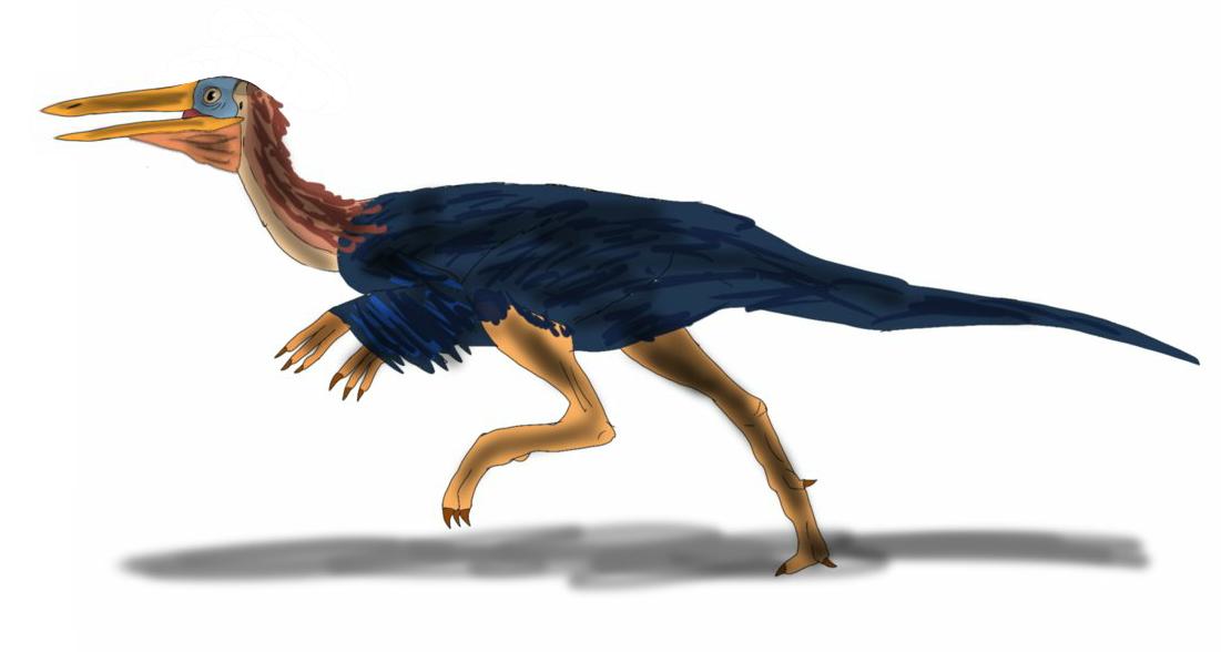 Pelicanomimus