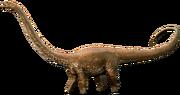 Diplodocus (SciiFii).png