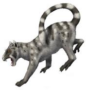 American langur lemur (SciiFii)