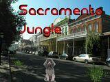 Sacramento Jungle (2016 Video Game)