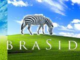 Zebraside Entertainment