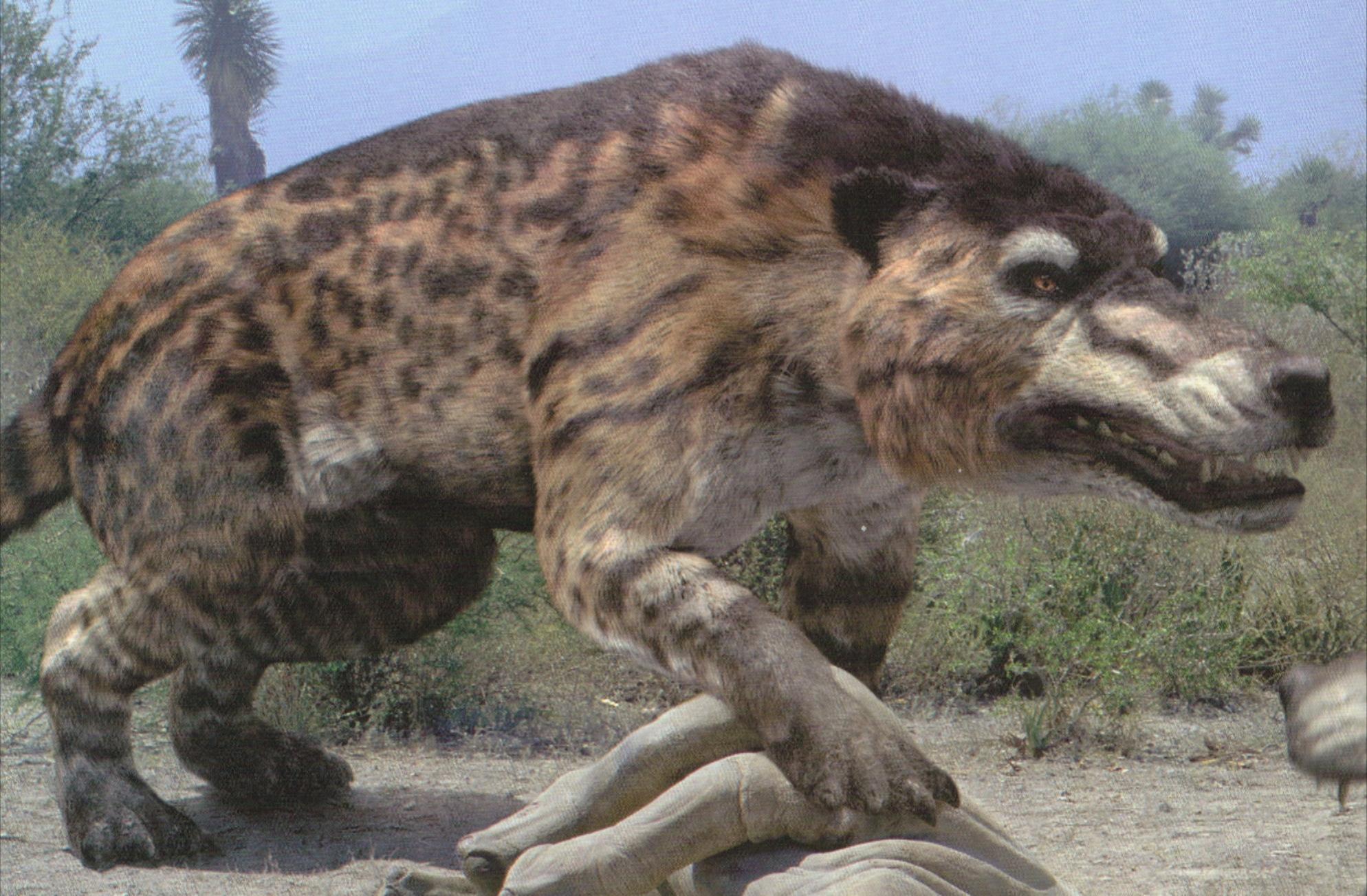 Muranthosarchus