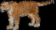 European jaguar (SciiFii)