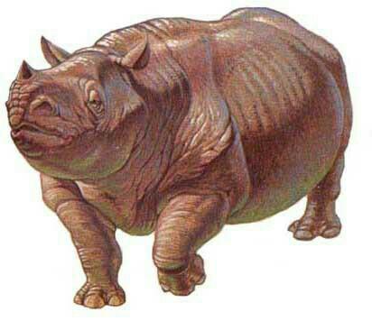 Horned Hippoceros