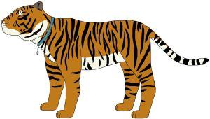Domestic Tiger