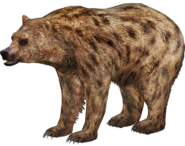 Spotted bear (SciiFii)